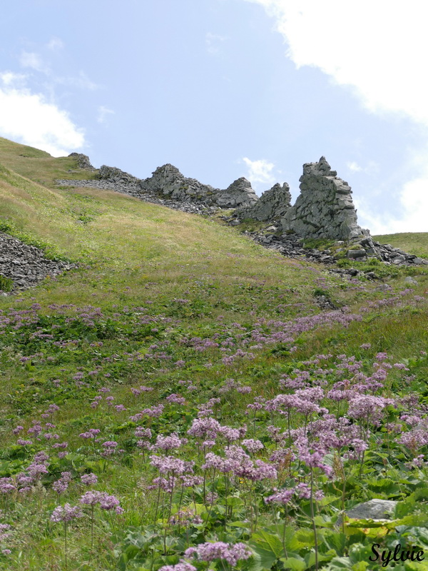 puy de sancy val de courre19